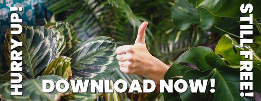 Hurry up! Download Free Sounds Now!